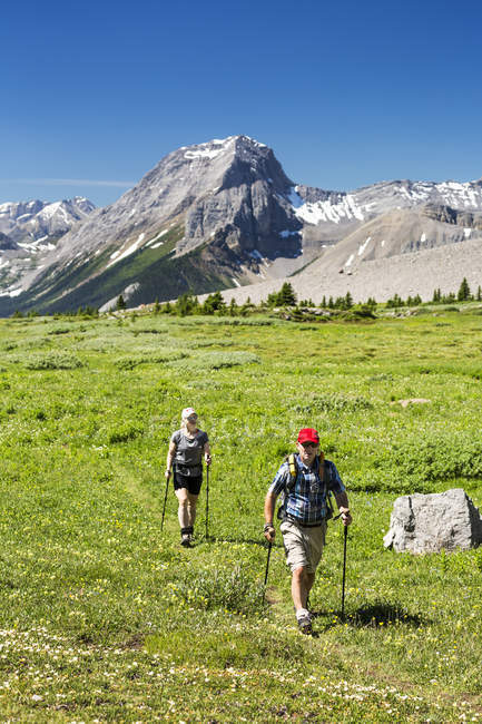 A man and woman hiking along an alpine meadow trail with mountains and blue sky in the background; Kananaskis Country, Alberta, Canada — Stock Photo