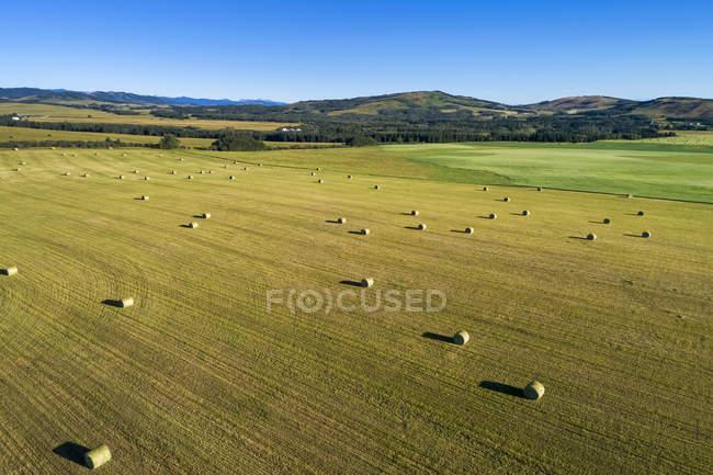 Вид с воздуха на тюки в поле с холмами и голубым небом, к западу от Хай-Ривер; Альберта, Канада — стоковое фото
