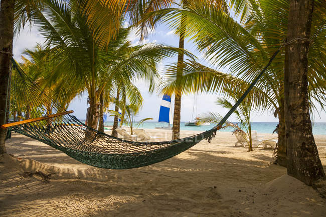 Empty hammock on a tropical beach; Negril, Jamaica — Stock Photo