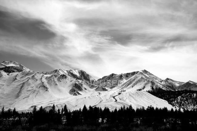 Immagine in bianco e nero di una catena montuosa innevata sotto un cielo nuvoloso con una foresta in una valle; Mammoth Lakes, California, Stati Uniti d'America — Foto stock