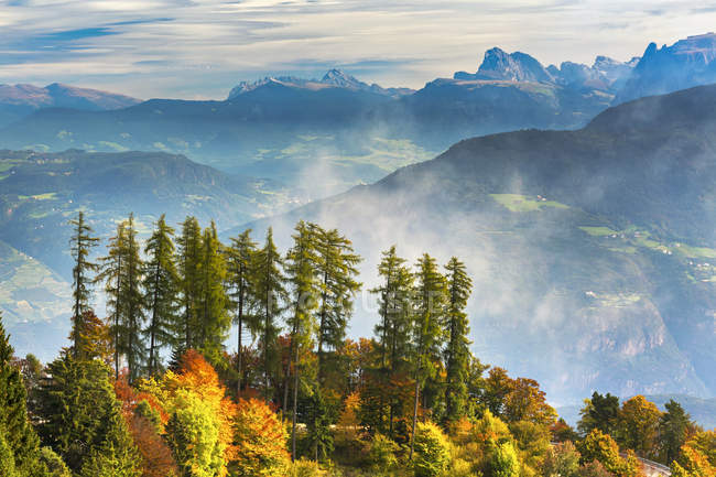 Colourful trees in autumn on a ridge overlooking rolling valley alpine slopes and mountains in the background with mist coming up from the valley; Caldaro, Bolzano, Italy — Stock Photo