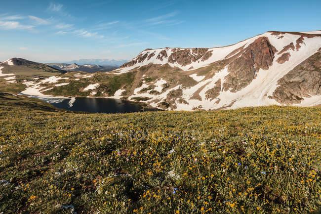 Vista da Beartooth Highway; Cody, Wyoming, Estados Unidos da América — Fotografia de Stock
