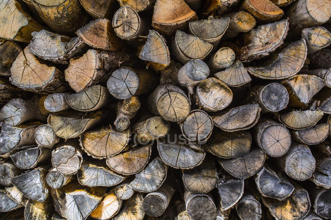 Ends of cut wood in a pile; Potton, Quebec, Canada — Stock Photo