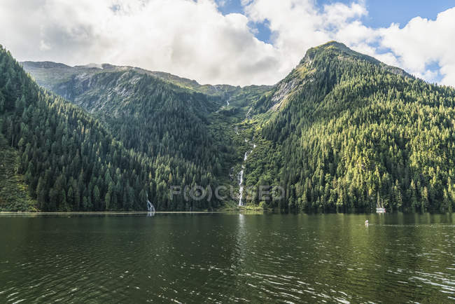 Lush rainforest along the coast of the Great Bear Rainforest, Hartley Bay, British Columbia, Canadá - foto de stock