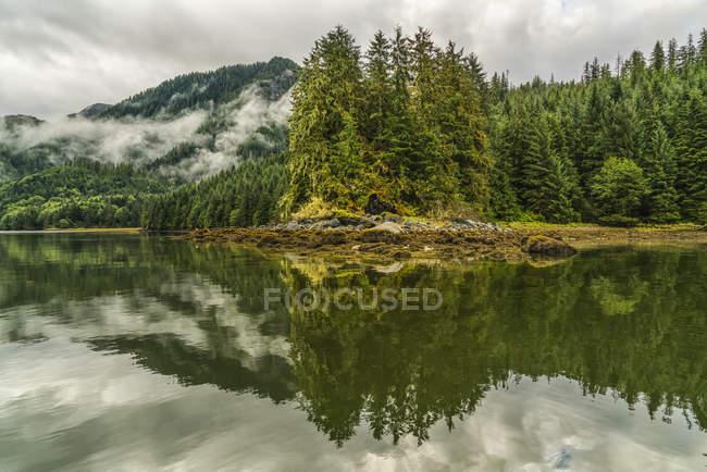 Paisagem temperamental de névoa sobre a Grande Floresta Ursa; Hartley Bay, British Columbia, Canadá — Fotografia de Stock