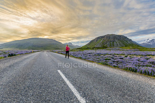 Female traveller walking alone on empty road in Iceland — Stock Photo