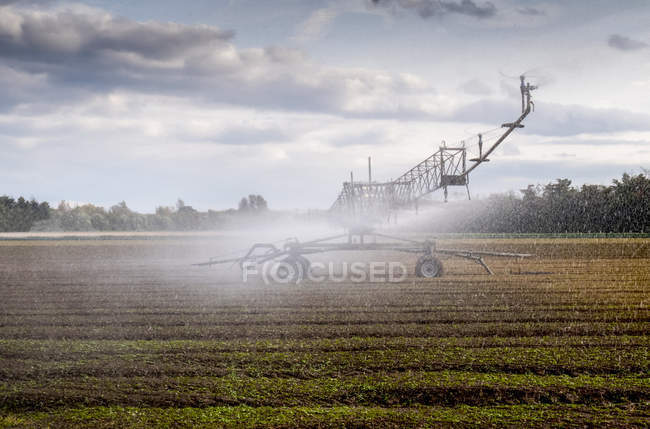 Scenic view of spraying a chemical on crops at farm, Berkshire, England — Stock Photo