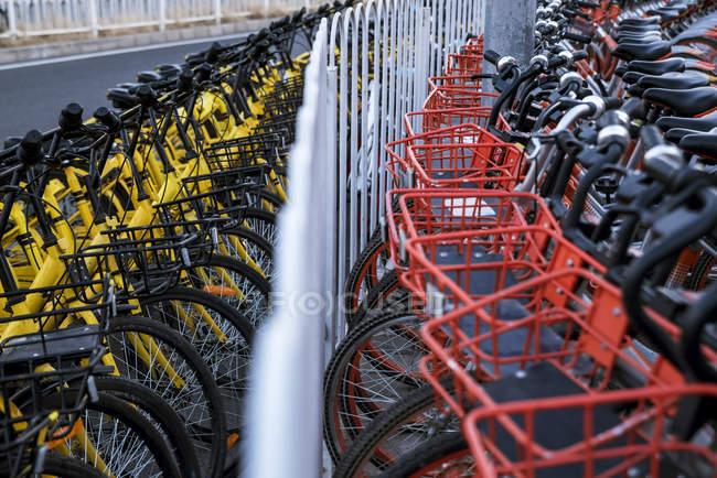 Fila de bicicletas de alquiler; Beijing, China - foto de stock