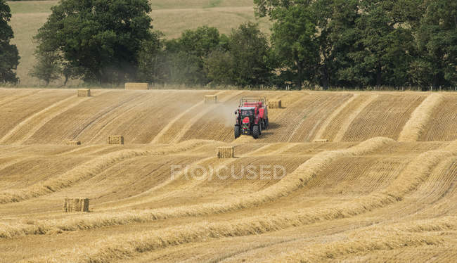 Farmer on red tractor making hay bales in a field — Stock Photo