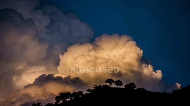 Billowing clouds glowing at sunset over silhouetted trees and hilltop, Utah, USA — Stock Photo
