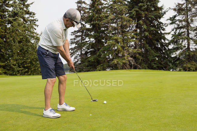 A mature male golfer skillfully putts a golf ball into a hole on a golf course, Edmonton, Alberta, Canada — Stock Photo