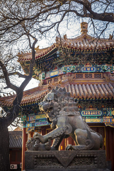 Lion gardien chinois au temple Lama, district de Dongcheng, Pékin, Chine — Photo de stock