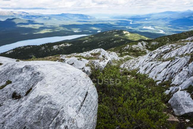 Пташиного польоту льодовиків і гори Національний парк Клувані і резерву, поблизу Haines Junction, Юкон, Канада — стокове фото
