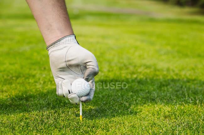 Кадроване зображення людини, вибираючи гольф м'яч зелений курс крупним планом — стокове фото