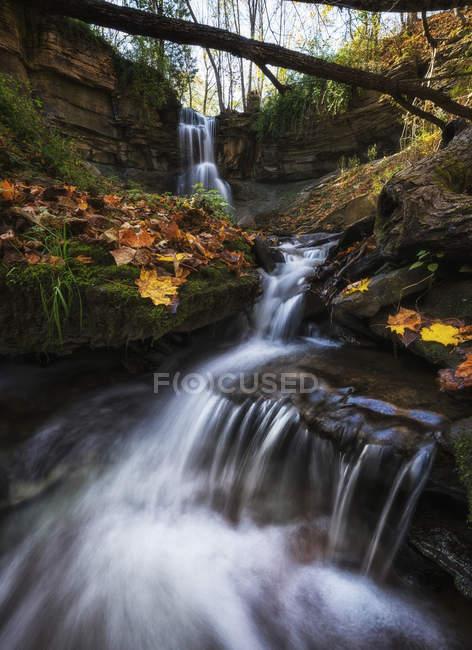 Живописный вид на величественный водопад Уэбвуд, Флетон, Онтарио, Канада — стоковое фото