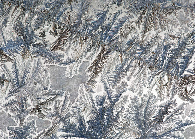 Close-up of frost patterns on glass; Calgary, Alberta, Canada — Stock Photo