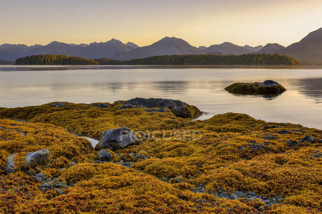Il sole sorge sull'isola di Vancouver da Dodd Island al largo della costa occidentale dell'isola di Vancouver, Pacific Rim National Park Reserve, British Columbia, Canada — Foto stock