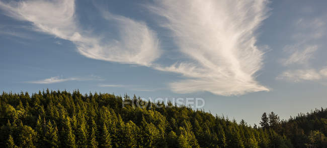 High wind creates whimsical clouds, Astoria, Oregon, USA — Stock Photo