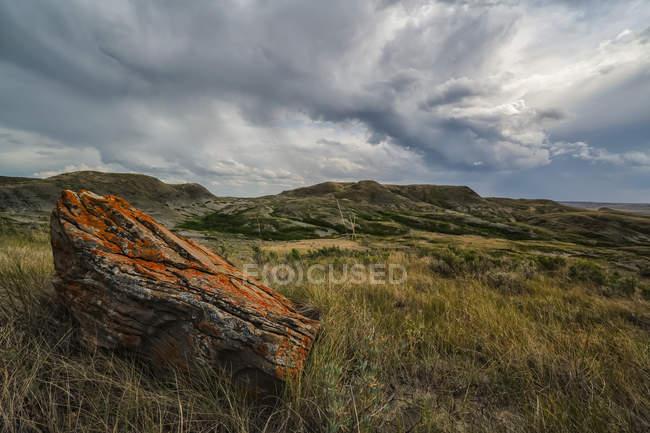 Лихен накрыл скалу в национальном парке Граслендс, на расстоянии 70 миль; Валь-Мари, Ошеван, Канада — стоковое фото
