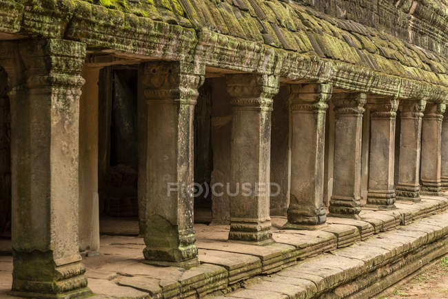 Colonnade of stone pillars with mossy roof, Ta Prohm, Angkor Wat, Angkor Wat, Siem Reap, Siem Reap Province, Cambodia — Stock Photo