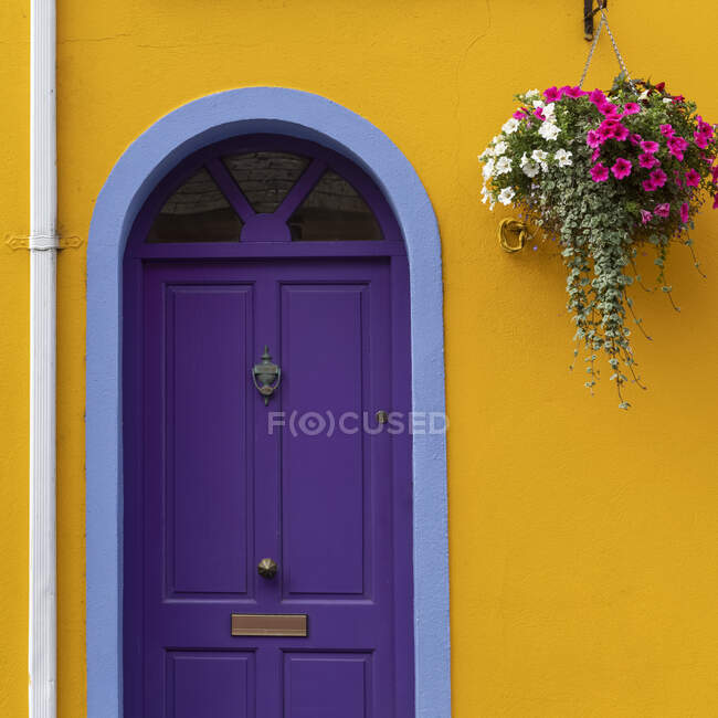Purple door on a yellow house; Kinsale, County Cork, Ireland — Stock Photo