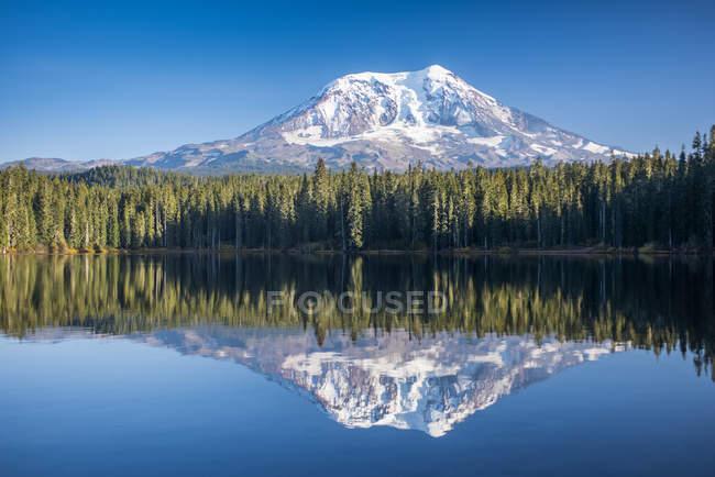 Гора Адамс відбивається в Тахлах озера, Гіффорд Pinchot Національний заповідник, Вашингтон, Сполучені Штати Америки — стокове фото