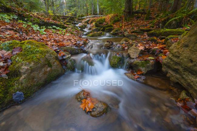 Вода каскадом над скалами в осеннем пейзаже, недалеко от Голубой горы, Онтарио, Канада — стоковое фото