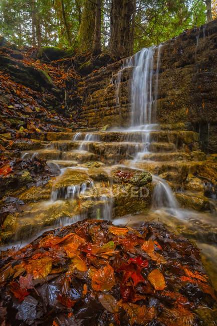 Agua que cae en cascada sobre un acantilado rocoso en un arroyo en otoño, Ontario, Canadá - foto de stock
