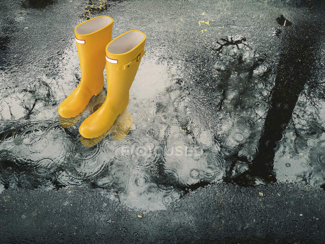 Yellow rubber boots in a rain puddle — Stock Photo