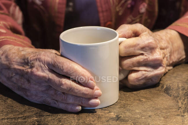Senior woman hands holding a coffee cup; Olympia, Washington, United States of America — Stock Photo
