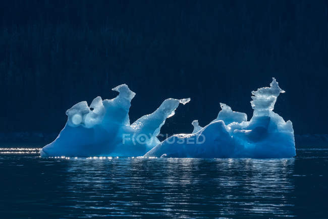 Iceberg floating in Tracy Arm, Tongass National Forest; Alaska, United States of America — Stock Photo