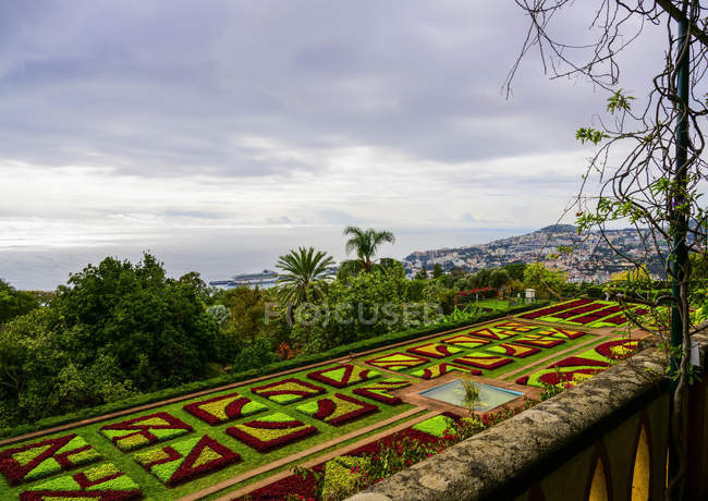 Formal flower beds in Madeira Botanical Gardens; Funchal, Madeira, Portugal — Stock Photo