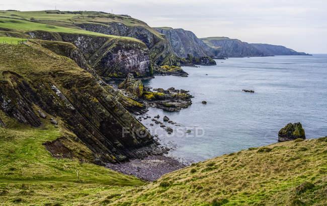 Береговая линия Роки в Сент-Эббс-Хеде; Сент-Эббс-Хед, Бервикшир, Шотландия — стоковое фото