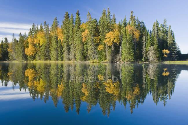 Colores otoñales en Glad Lake, Duck Mountain Provincial Park; Manitoba, Canadá - foto de stock