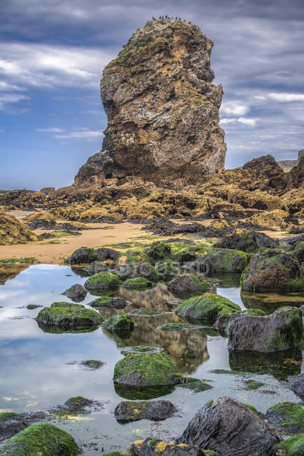 Sea Stack with rocks in tide pools at Marsden Bay off the North East coast of England; South Shields, Tyne and Wear, England — Stock Photo
