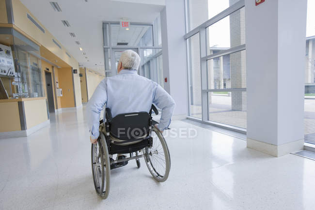 Rear view of a professor with Muscular Dystrophty sitting in a wheelchair — Stock Photo
