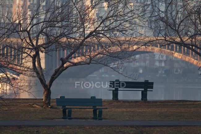 Malerischer Blick auf Bänke im Park von Boston, Suffolk County, massachusetts, usa — Stockfoto