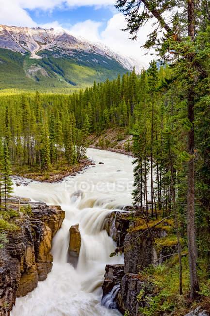 Vista panorámica de Sunwapta Falls, Sunwapta River, Jasper National Park; Alberta, Canadá - foto de stock