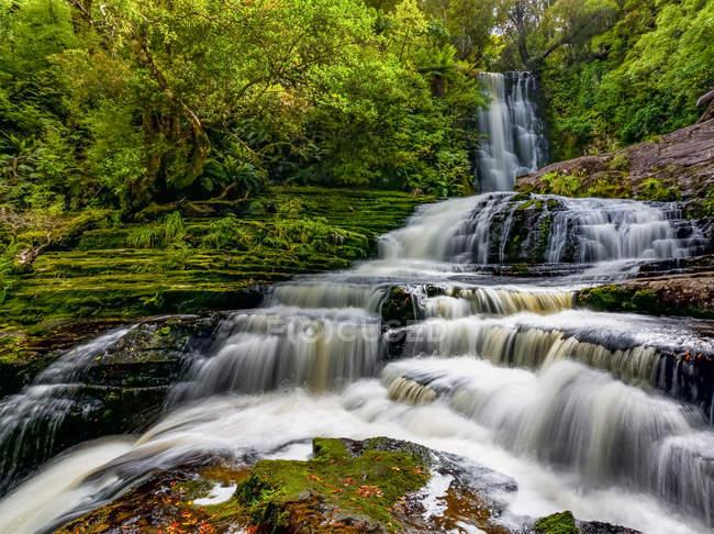 Paisagem incrível com McLean Falls; Nova Zelândia — Fotografia de Stock