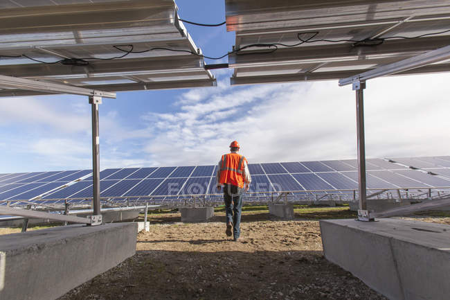 Power engineer walking toward solar photovoltaic array — Stock Photo