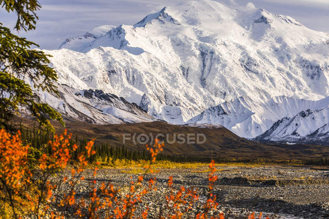 Denali above the Muddy River in autumn, viewed from near Peters Glacier in the backcountry of Denali National Park and Preserve; Alaska, United States of America — Stock Photo