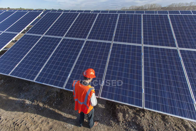 Power engineer looking at surface of panels at solar photovoltaic array — Stock Photo