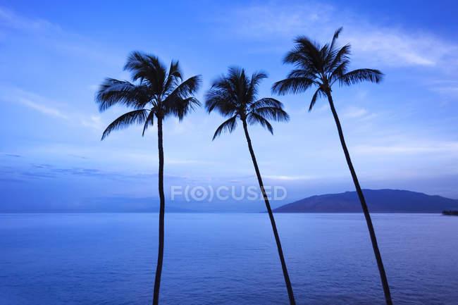 Kamaole One and Two beaches, Kamaole Beach Park; Kihei, Maui, Hawaii, United States of America — Stock Photo