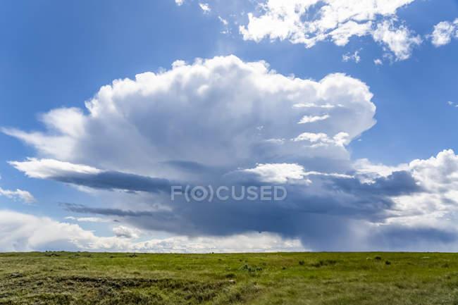 Vasti campi di campi agricoli sulle praterie sotto un grande cielo con formazioni di nuvole e una tempesta in lontananza; Val Marie, Saskatchewan, Canada — Foto stock