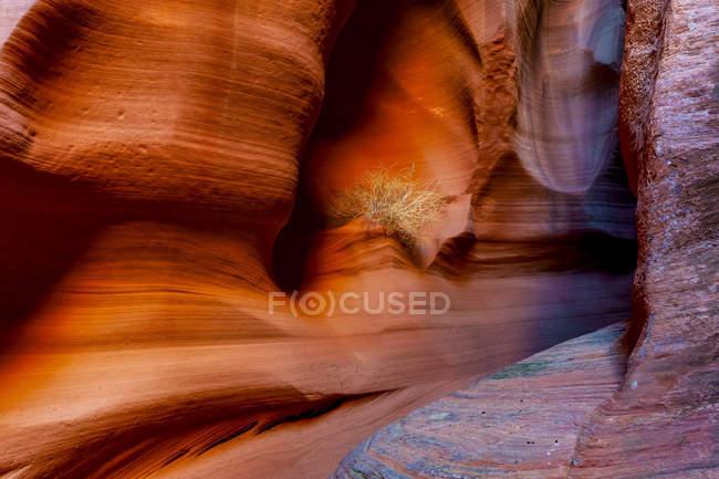 Vista panoramica del Canyon X; Page, Arizona, Stati Uniti d'America — Foto stock