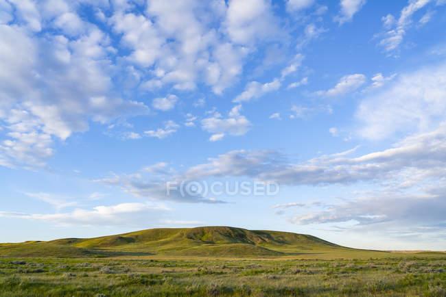 Пышная зеленая трава на поле и холме, Национальный парк Граслендс; Валь-Мари, Очеван, Канада — стоковое фото