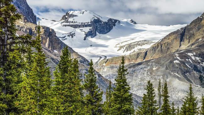 Montañas Rocosas cubiertas de nieve en el Parque Nacional Baniff a lo largo del Icefield Parkway; Distrito de Mejoramiento No. 9, Alberta, Canadá - foto de stock