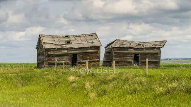 Due fienili in crollo seduti su terreni agricoli, contea di Kneehill; Drumheller, Alberta, Canada — Foto stock