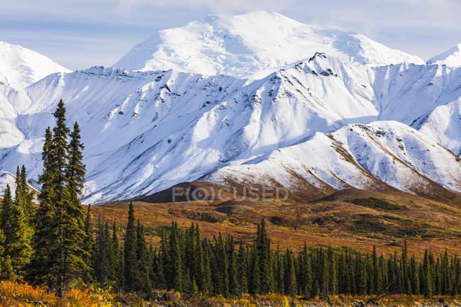 La nieve fresca recorre las montañas en otoño en el Parque Nacional Denali y la Preservación; Alaska, Estados Unidos de América. - foto de stock