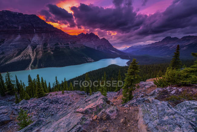Озеро Пейто под впечатляющим небом, Национальный парк Банфф; Альберта, Канада — стоковое фото